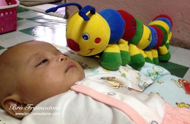 Baby Caterpillar