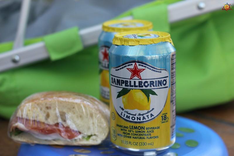 Qué llevar a picnic
