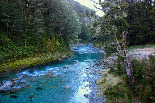 this stream on the Routeburn was so clear!