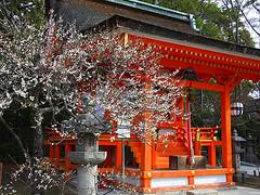 shrine101