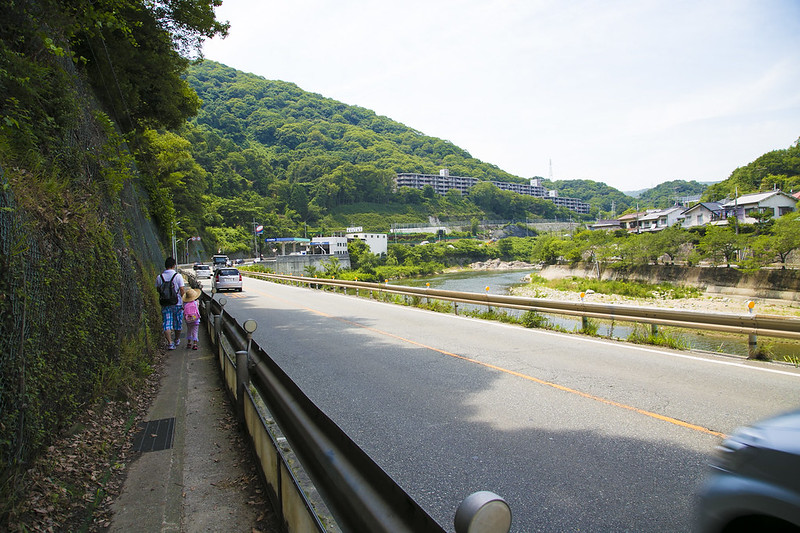 武庫川渓谷廃線ハイキング(生瀬ー武田尾)496