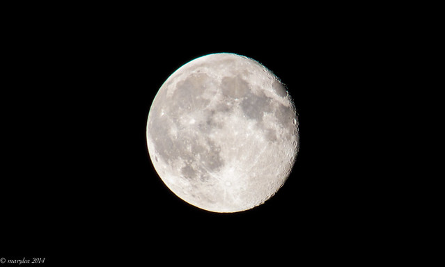 Nearly Full Moon, July 14, 2014 (just after midnight)