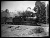 Locomotive No. 62 with log haulage, unidentified location, [n.d.]