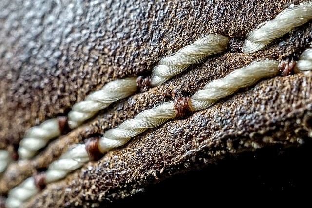 A Stitch in Time, Sony ILCE-6000, Sony E 30mm F3.5 Macro