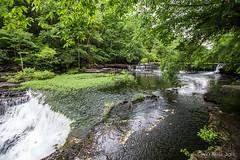 Big Falls Duck River 6095