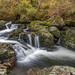 Aira Beck by Donard850