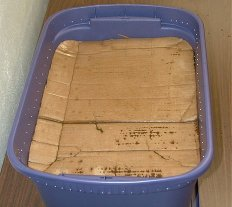 How To Build A Worm Bin the Cheap and Easy Way | Backdoor Survival