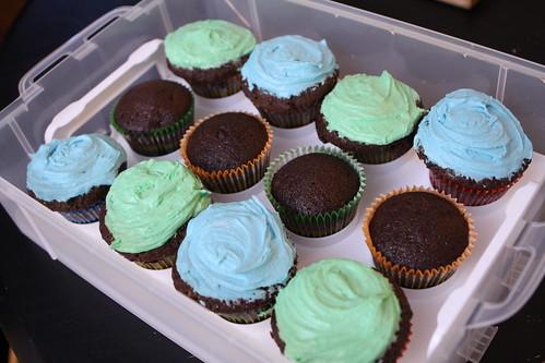 Wombat Birthday Cupcakes