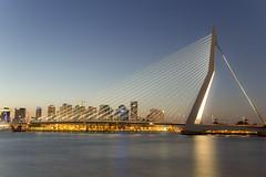 Erasmus Bridge...again!