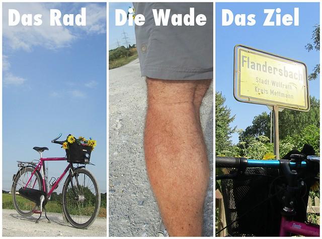 Das Rad - Die Wade - Das Ziel