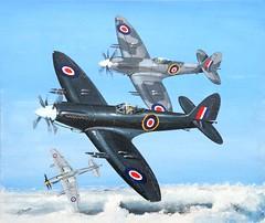 Seafire 46