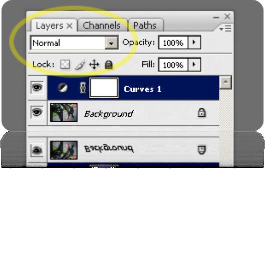 tutorial, lý thuyết, công cụ trong photoshop, photoshop