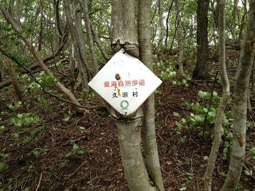 鍋倉山-木に侵食される看板