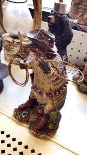 Anyone need a cowboy armadillo?