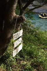 諏訪峡 木のぼりツアー