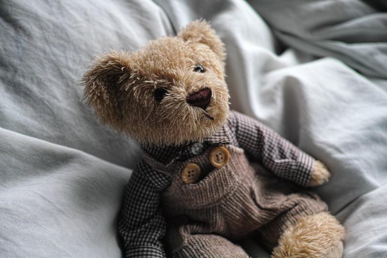 Bear DP2 Merrill