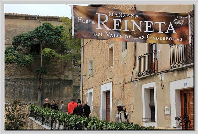 Feria de la Reineta en Cantabrana (4)