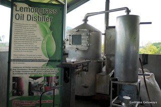 lemongrass-oil-distiller.jpg