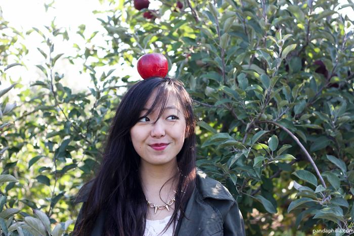 newtonian apple