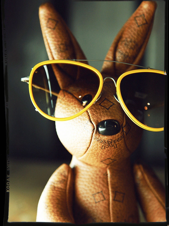 bunny in shades