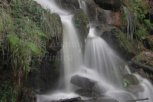 Ur-jauzia #DePaseoConLarri #Photography 1341.jpg copia
