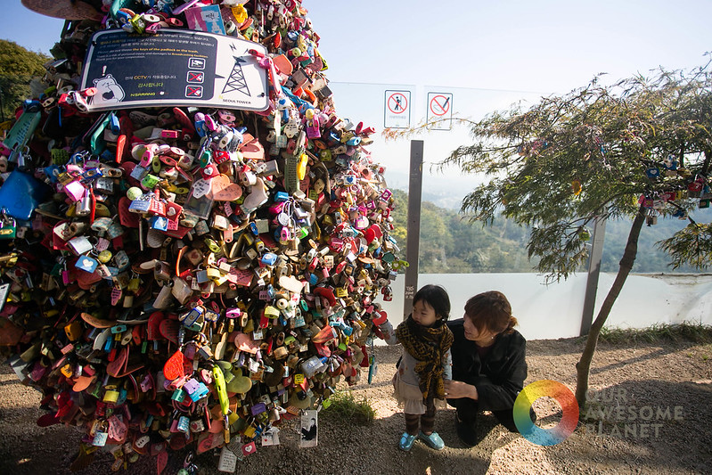 Seoul Tower - Our Awesome Planet-115.jpg