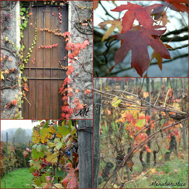 collage autunnale