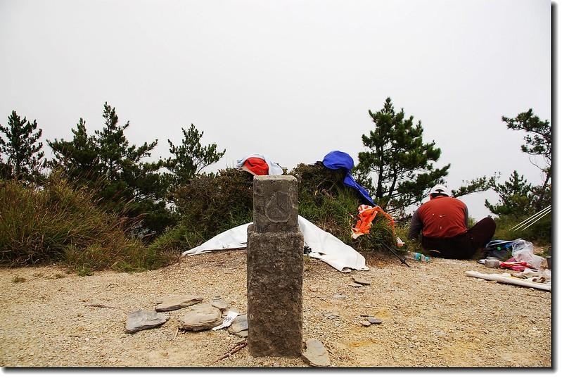 六順山森林三角點(Elev. 2999 m) 2