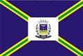 Bandeira da cidade de Varginha