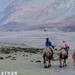 Nubra Valley, Leh by asheshr