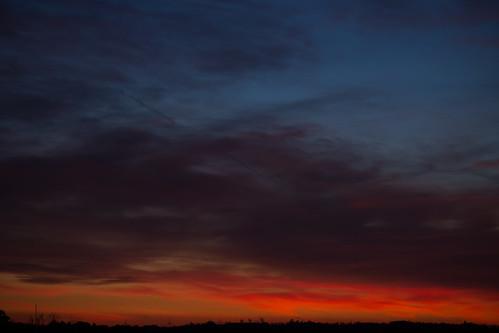 winter sunset landscape heath newmarket