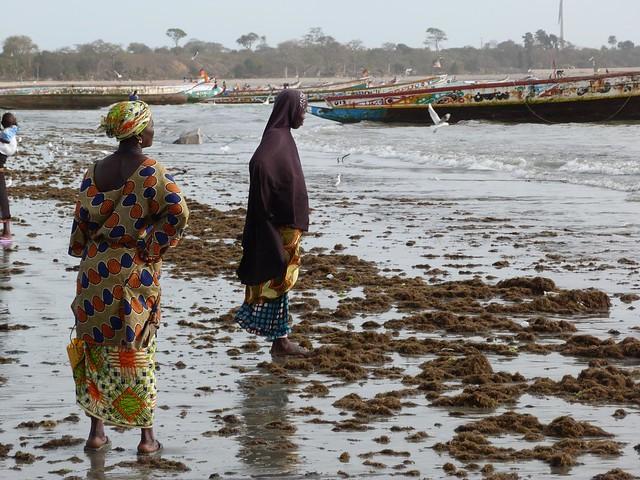 Mujeres esperando en el mercado de la playa de Tanji (Gambia)