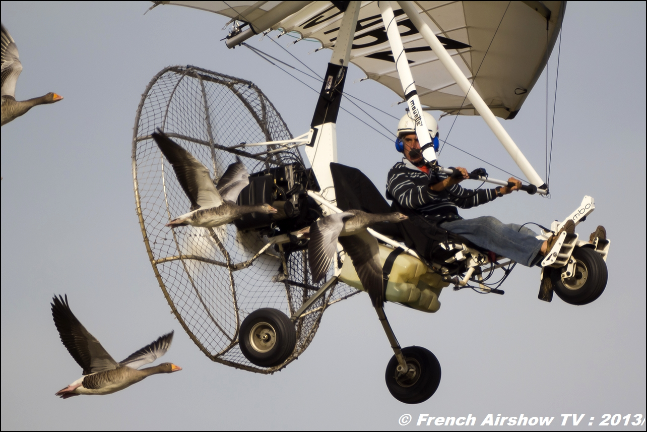 Vol avec les oies Christian Moullec