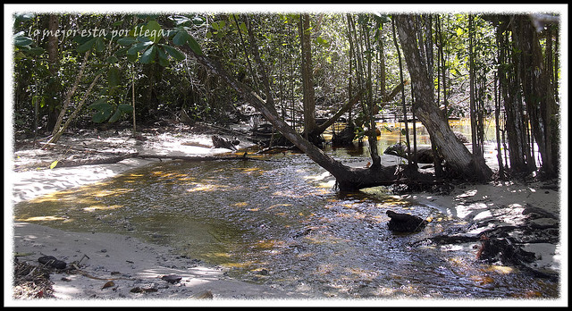 Parque Nacional Cahuita, Río Perezoso