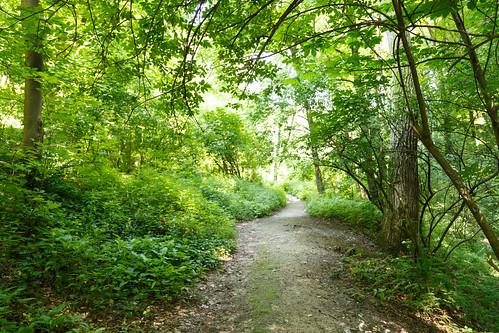 park nature bulgaria shumen kyoshkyovite shumenprovince