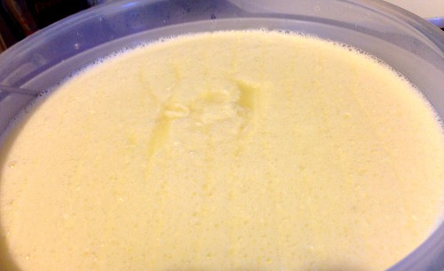 open vat of freshly incubated curds. Several cuts have been made, and translucent whey is accumulating in them
