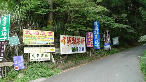 20140622-溪頭-武岫農場 (46)