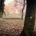 Fin de saison... / End of Season by Gilderic Photography