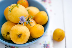 Summer fruits apricots in the blue plate
