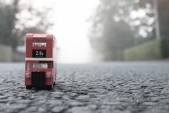 Foggy London morning (297:366)