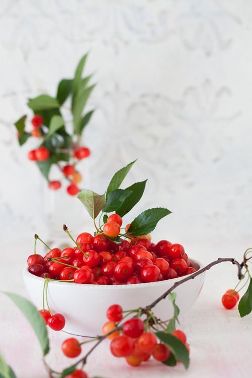 Sour Cherry 3