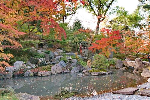 【写真】2012 紅葉 : 長岡天満宮/2020-10-09/IMGP6543