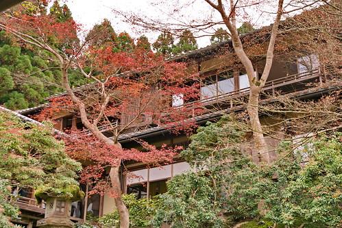 【写真】2012 紅葉 : 瑠璃光院/2020-06-07/IMGP7701