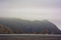 Catalina Island 2013