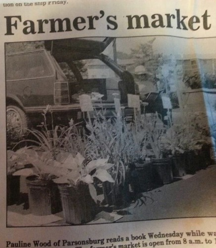 My mother, Pauline Wood, started selling plants at the farmers market from the back of her station wagon in 1986.