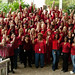 Small photo of American Heart Association