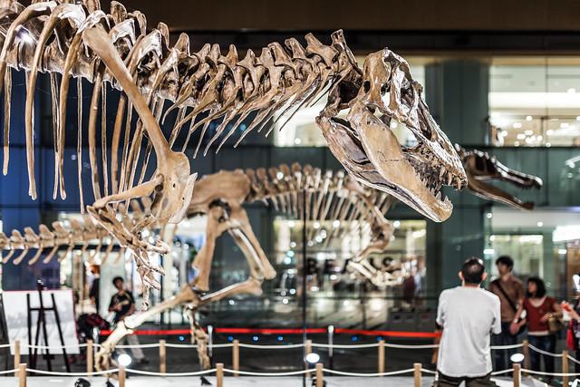 20130828_02_大恐竜展 in 丸の内 2013 ~福井県恐竜博物館コレクション~
