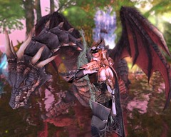 Elf Dragoon_2