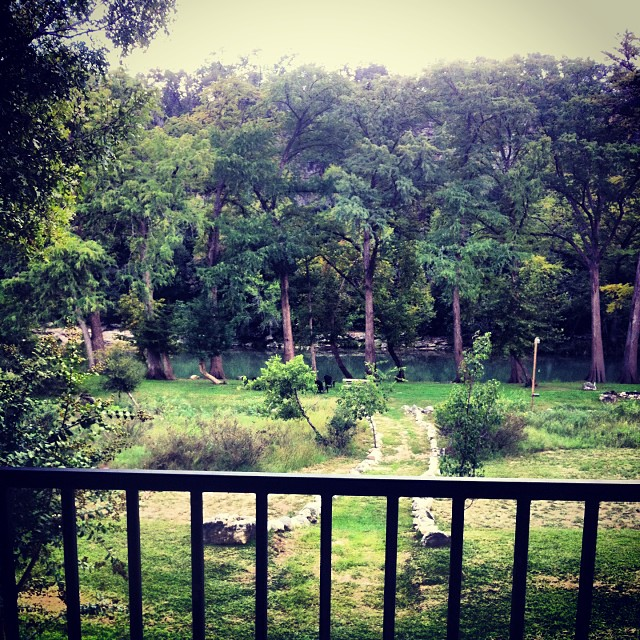 Porch view the last few days. Returned to a wetter, greener Austin. Love it.