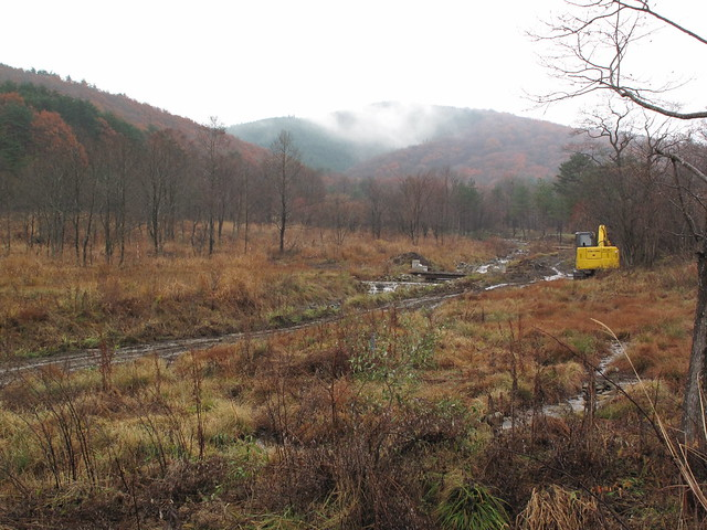 八幡湿原自然再生事業が進む霧ヶ谷湿原.